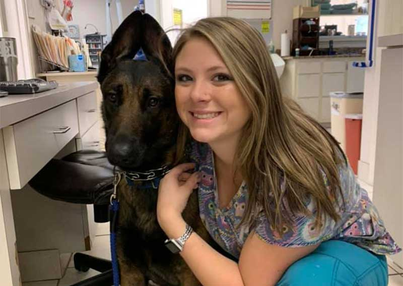 Dog Veterinary Care, Fort Myers
